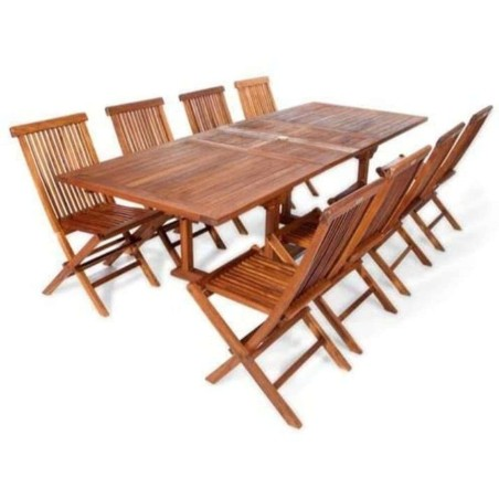 Extended Table 310 Set