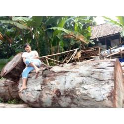 Antique Logs